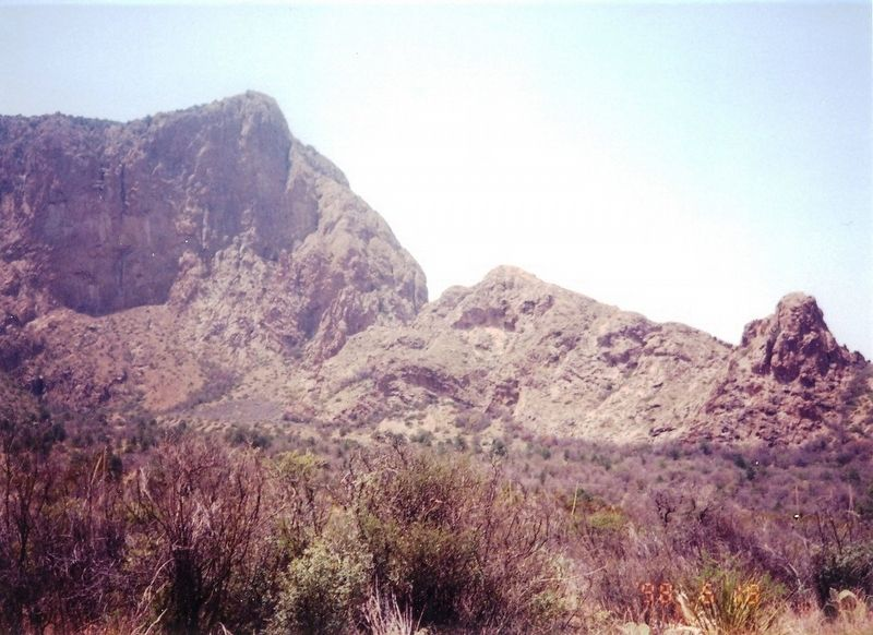 Chihuahuan Desert image. Click for full size.