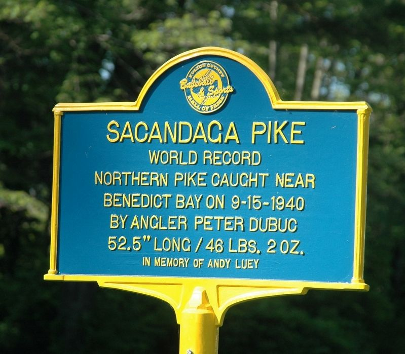 Sacandaga Pike Marker image. Click for full size.