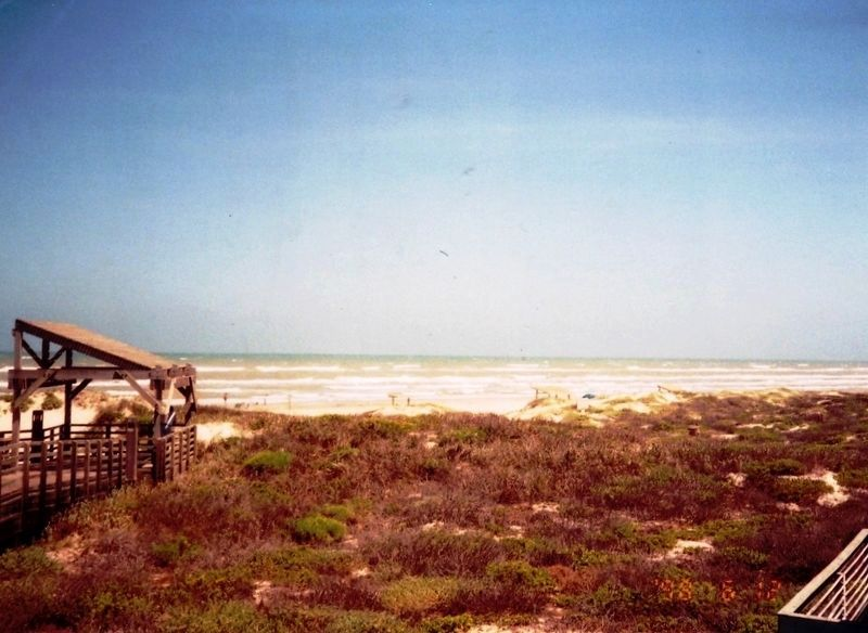 Padre Island National Seashore image. Click for full size.