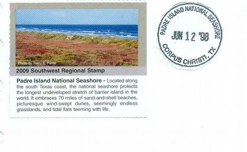 Padre Island National Seashore-stamp from the National Park Service image. Click for full size.