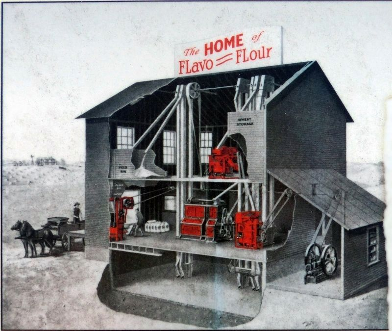 Home of FLavo = FLour image. Click for full size.