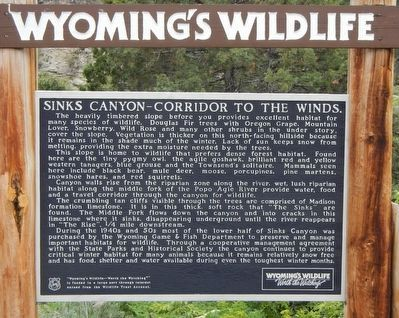 Sinks Canyon - Corridor to the Winds Marker image. Click for full size.