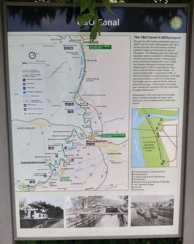 The C&O Canal in Williamsport Marker image. Click for full size.