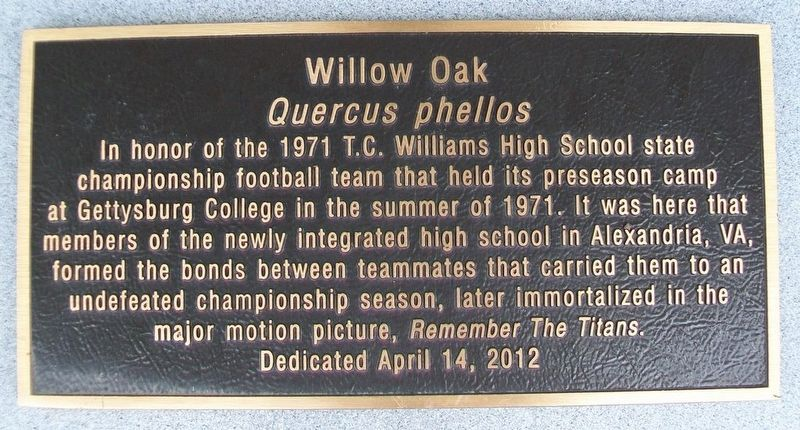 1971 T.C. Williams High School Football Team Honor Oak Marker image. Click for full size.
