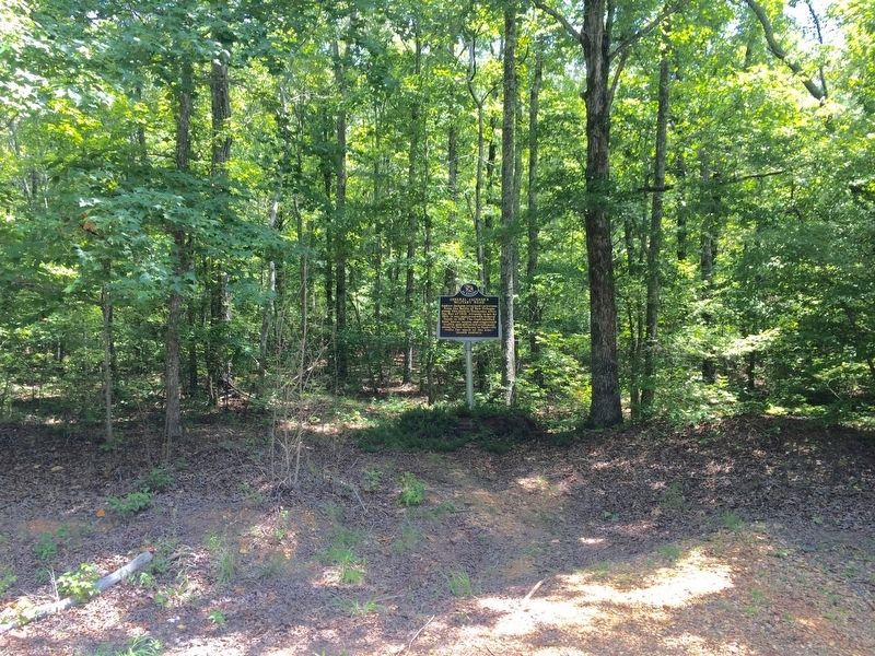 General Jackson's Military Road Marker partially into woods. image. Click for full size.
