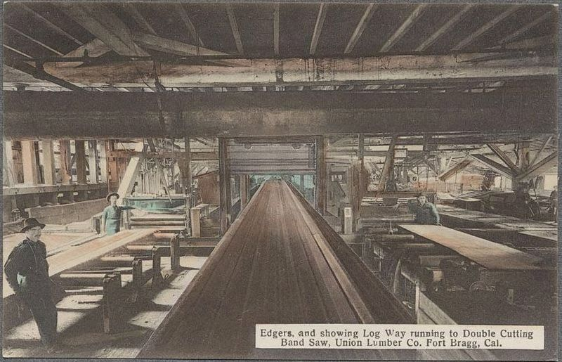 Edgers, and showing Log Way running to Double Cutting Band Saw, Union Lumber Co. Fort Bragg, Cal. image. Click for full size.
