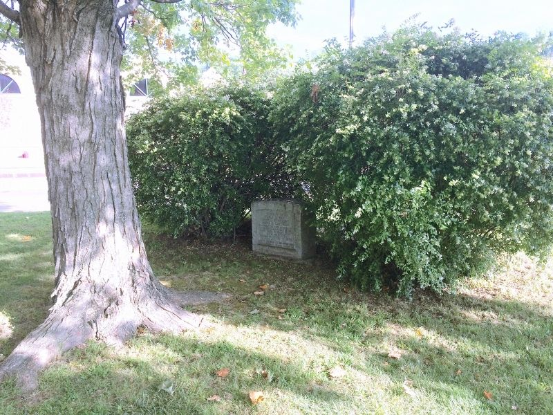 First Three U.S. Deaths in WWI Monument in bushes at corner of Courthouse lawn. image. Click for full size.