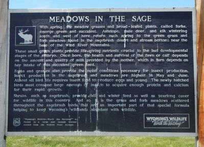 Meadows in the Sage Marker image. Click for full size.