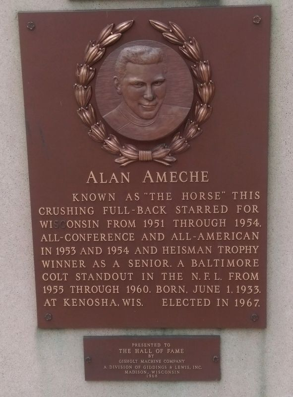 Alan Ameche Marker image. Click for full size.