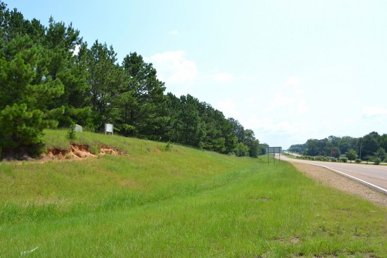 View to the East from Natchez Trace Road image. Click for full size.