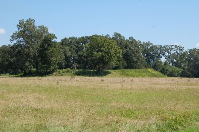 Marksville Mounds image. Click for full size.