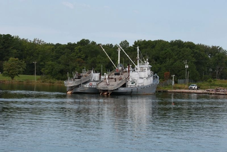 Contemporary Menhaden Trawler image. Click for full size.