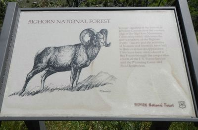 Bighorn National Forest Marker image. Click for full size.
