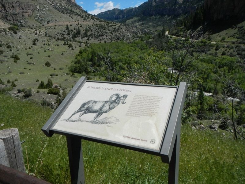 Bighorn National Forest Marker image, Touch for more information