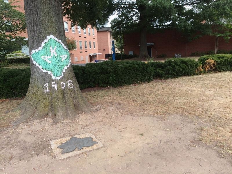 Centennial Year, Alpha Kappa Alpha Sorority Marker image. Click for full size.