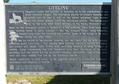 Lifeline Marker image. Click for full size.