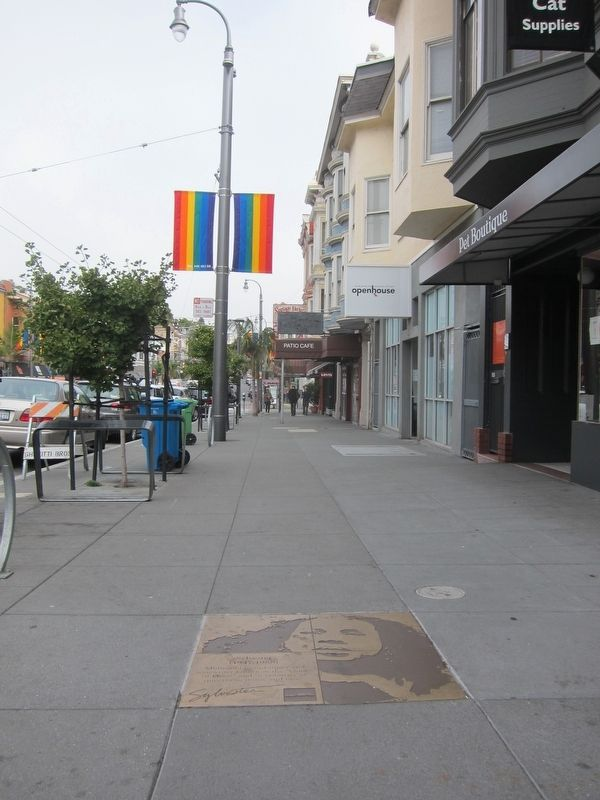 Sylvester Marker - Wide View Looking North Up Castro Street image. Click for full size.