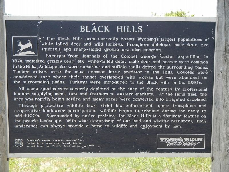 Black Hills Marker image. Click for full size.