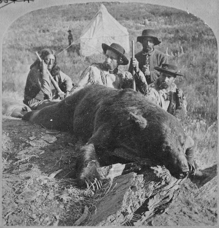 Our First Grizzly, killed by Gen. Custer and Col. Ludlow image. Click for full size.
