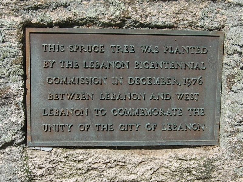 City of Lebanon Spruce Tree Marker image. Click for full size.
