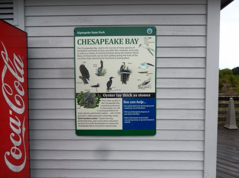 Chesapeake Bay Marker image. Click for full size.