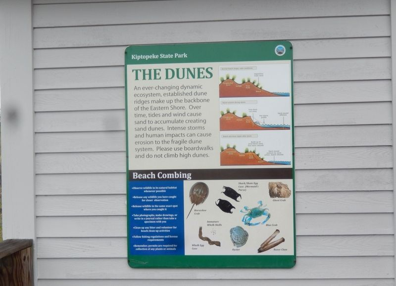 The Dunes Marker image. Click for full size.