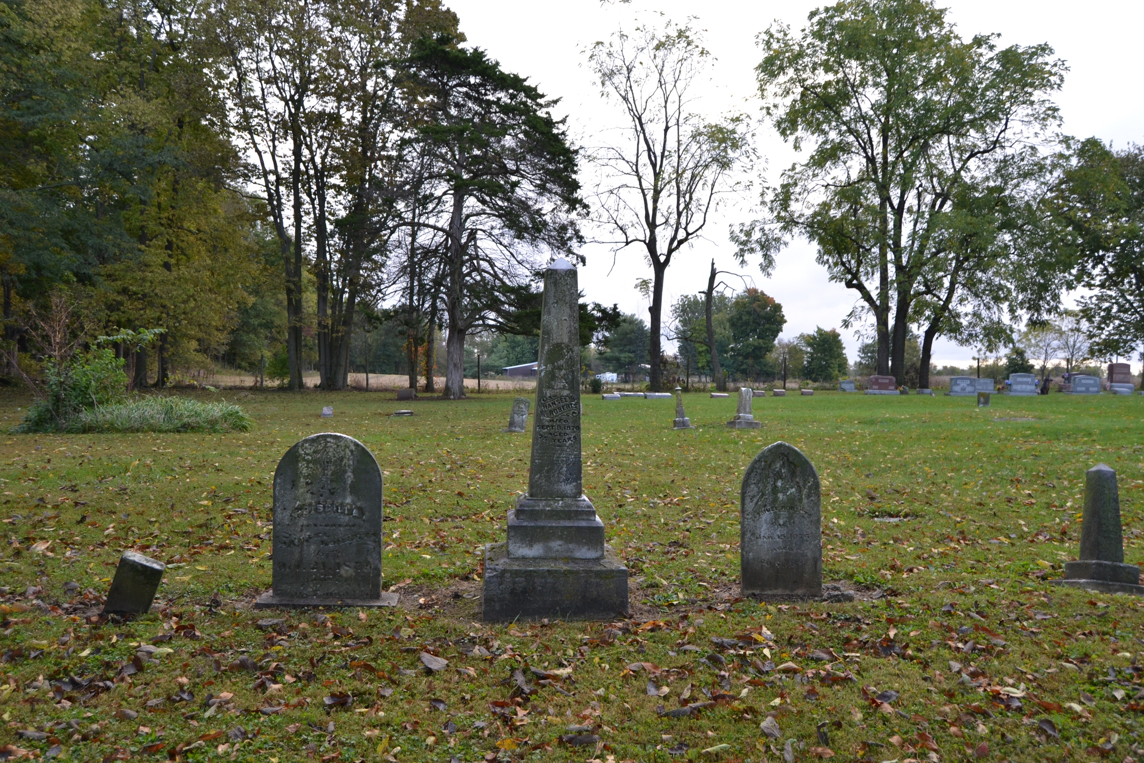 Graves of Hansel Roberts and Family