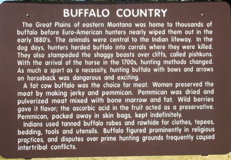 Buffalo Country Marker image. Click for full size.