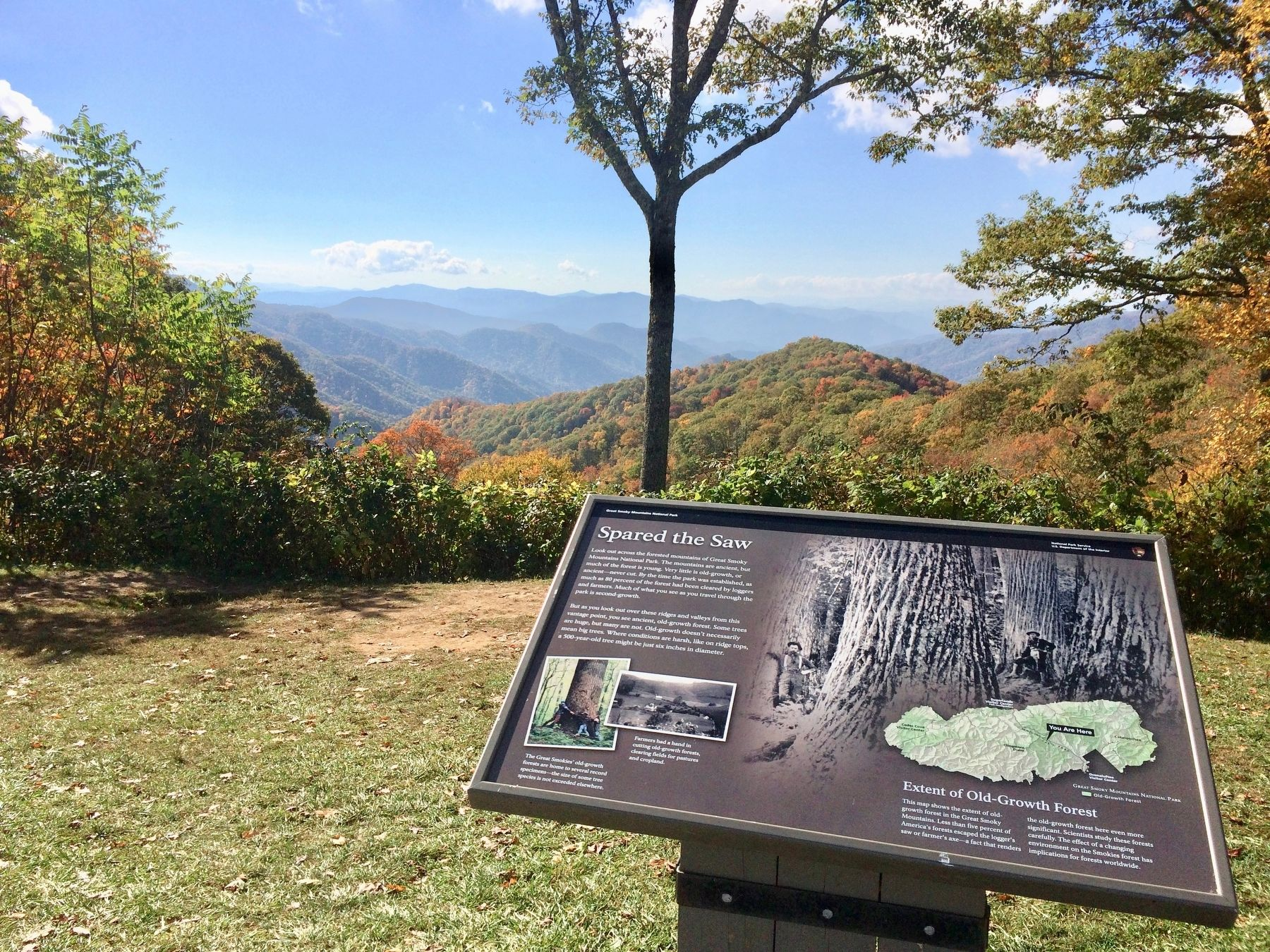 View of marker and forests beyond. image. Click for full size.