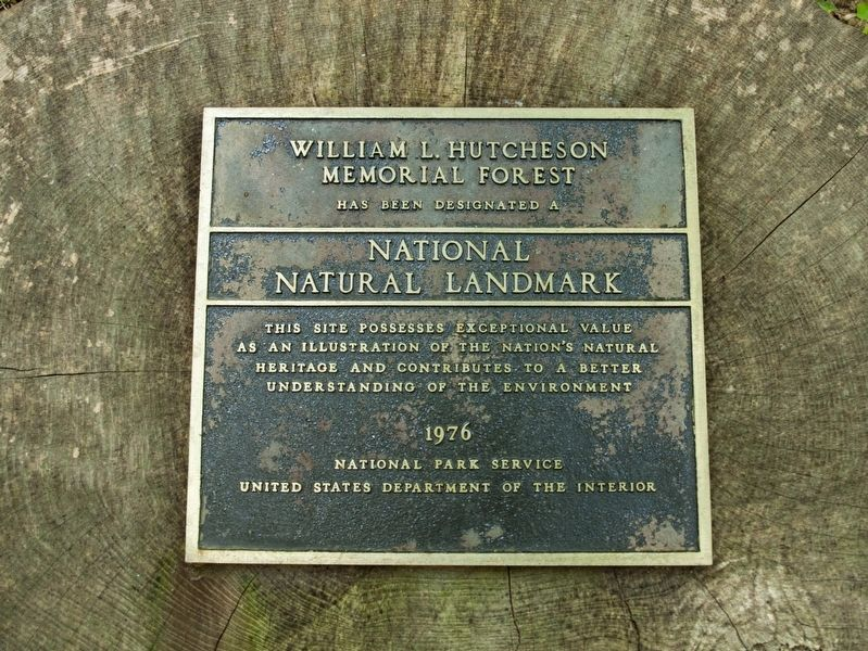 William L. Hutcheson Memorial Forest Marker image. Click for full size.