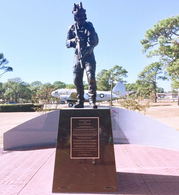 Special Tactics Memorial image. Click for full size.
