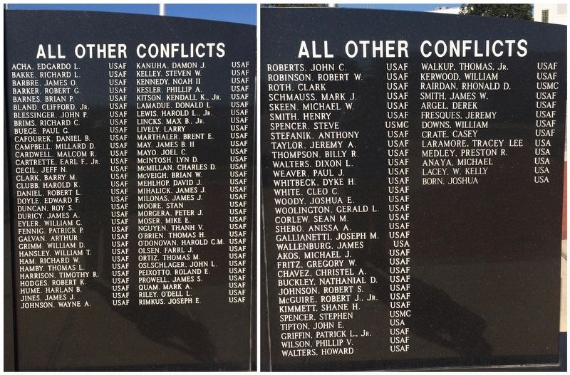 Veterans of All other Conflicts since Vietnam. image. Click for full size.