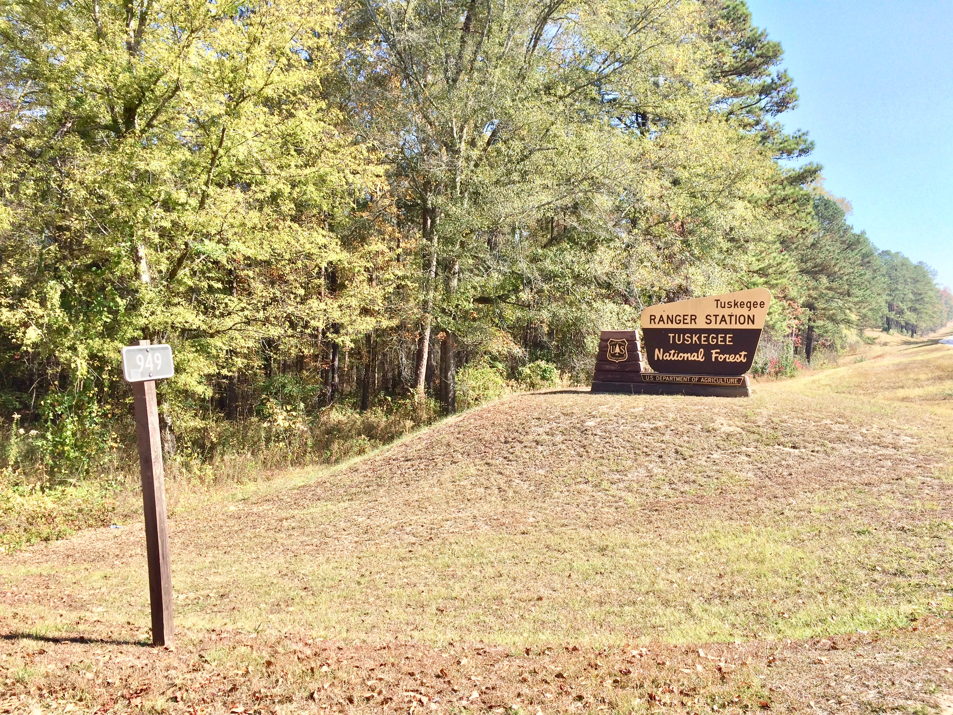 Entrance to Tuskegee National Forest Road 949 and to the Ranger Station off Alabama Highway 186.
