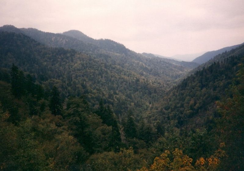 Great Smokey Mountains image. Click for full size.
