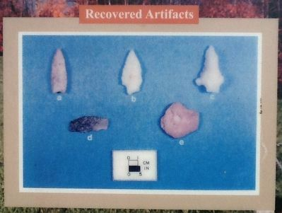 Recovered Artifacts image. Click for full size.