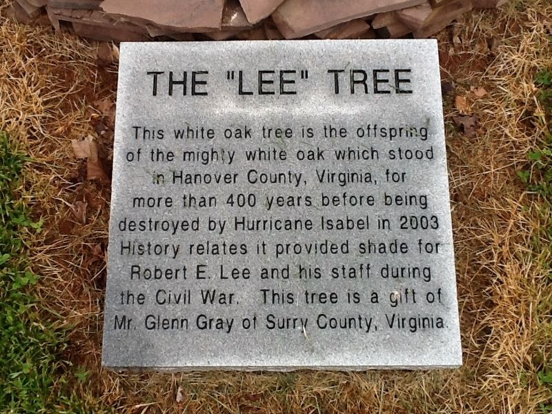 "The ""Lee"" Tree Marker image. Click for full size."