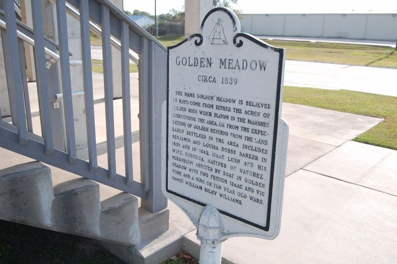 Golden Meadow Marker image. Click for full size.