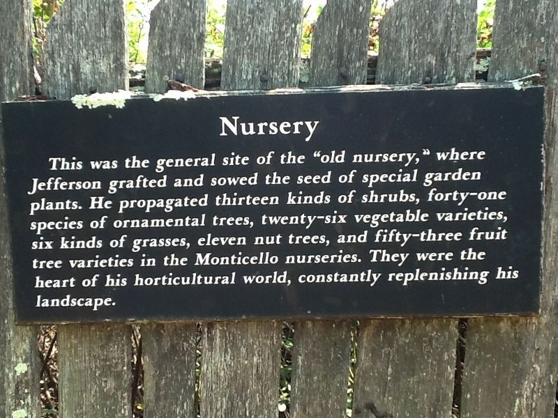 Nursery Marker image. Click for full size.
