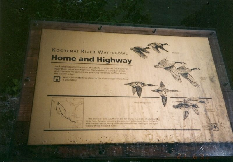 Kootenai River Waterfowl Home and Highway Marker image. Click for full size.