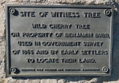 Site of Witness Tree Marker image. Click for full size.