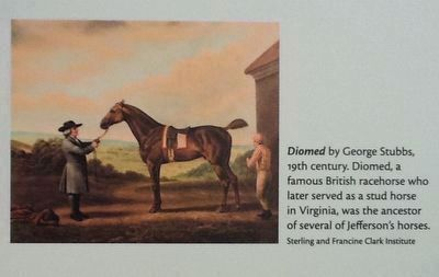 <i>Diomed</i> by George Stubbs, 19th century image. Click for full size.
