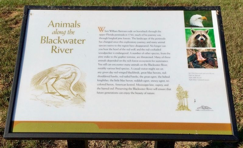 Animals Along the Blackwater River Marker image. Click for full size.