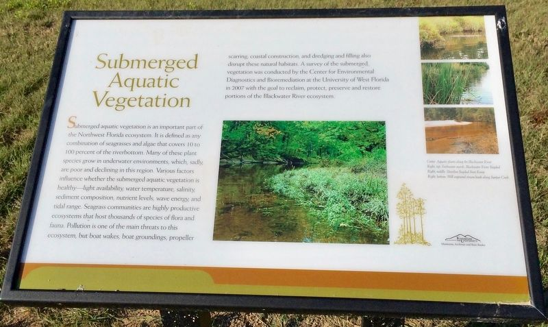 Submerged Aquatic Vegetation Marker image. Click for full size.