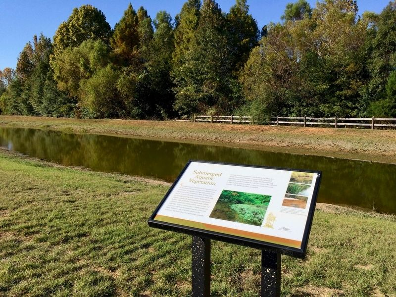 Marker along pond and vegetation. image. Click for full size.