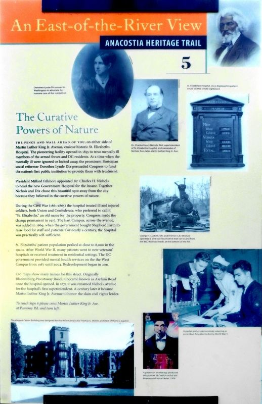 The Curative Powers of Nature Marker image. Click for full size.