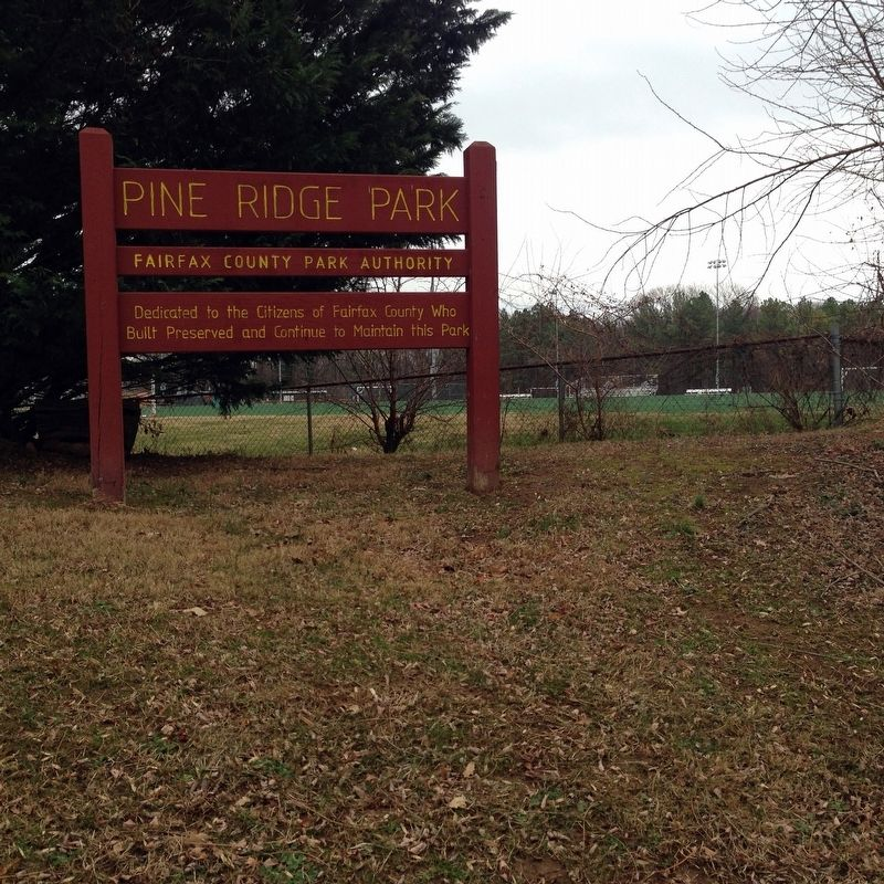 Pine Ridge Park image. Click for full size.