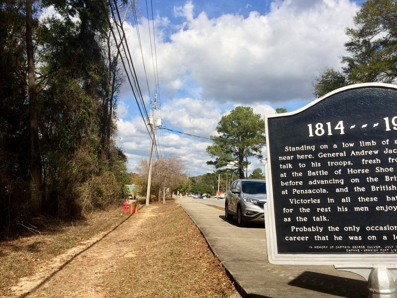 View of marker looking north towards U.S. Highway 98. image. Click for full size.