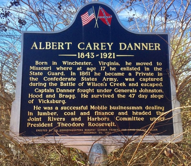 Albert Carey Danner Marker image. Click for full size.