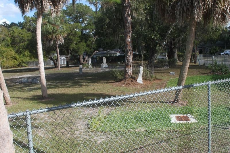 The 'Old' Palmetto Cemetery image. Click for full size.