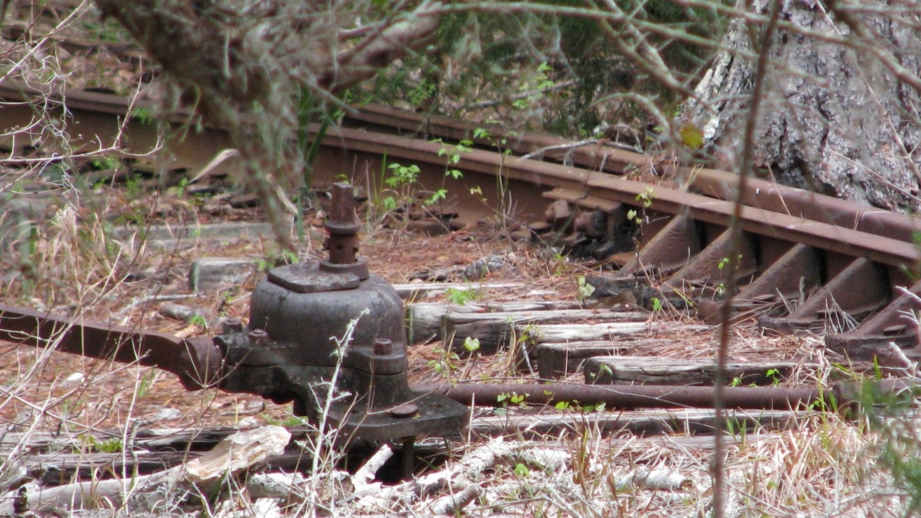 Lehigh Trail: Railroad Switch Remnant image. Click for full size.